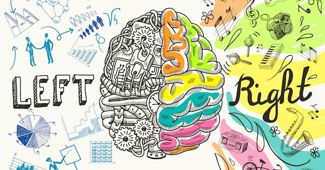 Brain-Dominance-Immune-System.jpeg
